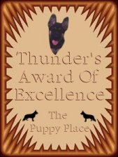 Thunder's Award of Excellence